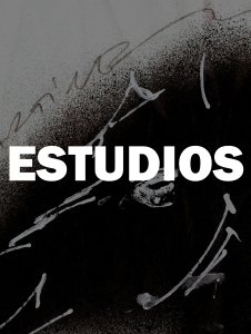 ESTUDIOS-01